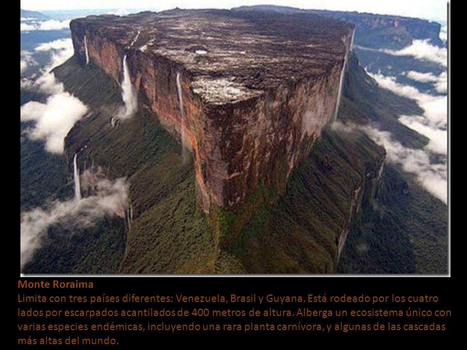 Monte Roraima Limita con tres países diferentes: Venezuela, Brasil y Guyana.