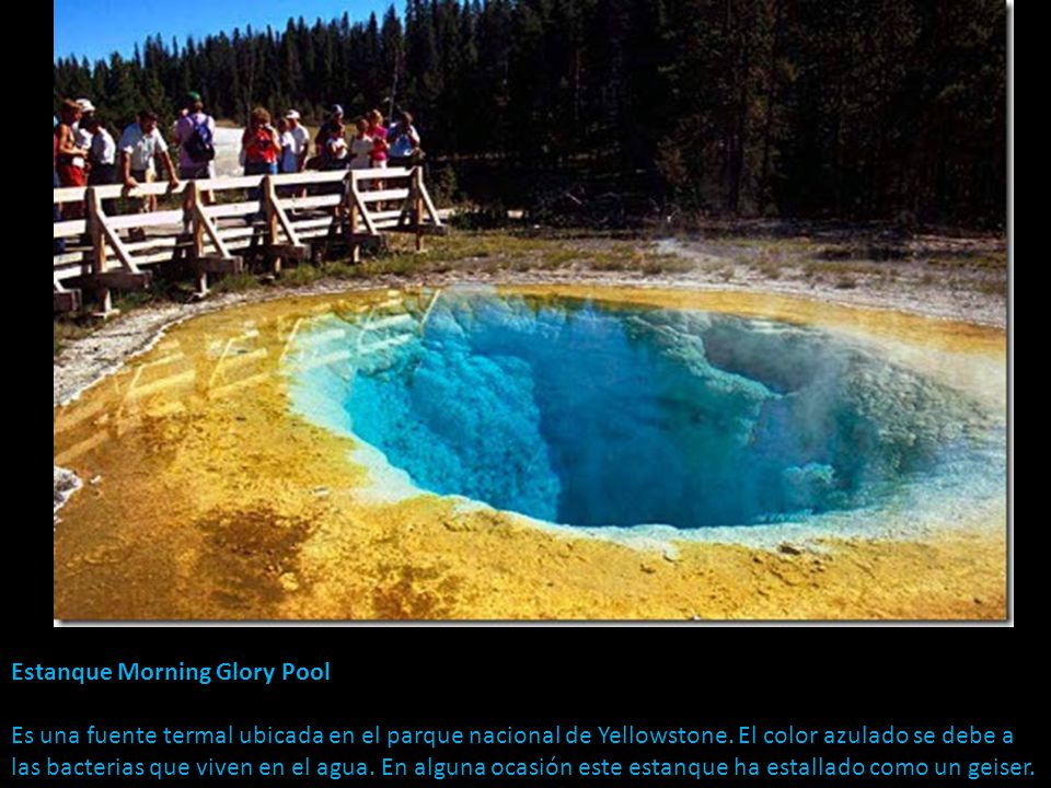 Estanque Morning Glory Pool Es una fuente termal ubicada en el parque nacional de Yellowstone.