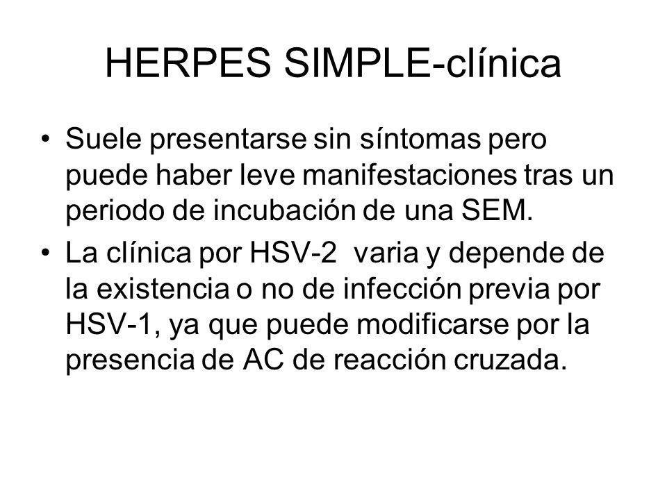 HERPES SIMPLE-clínica