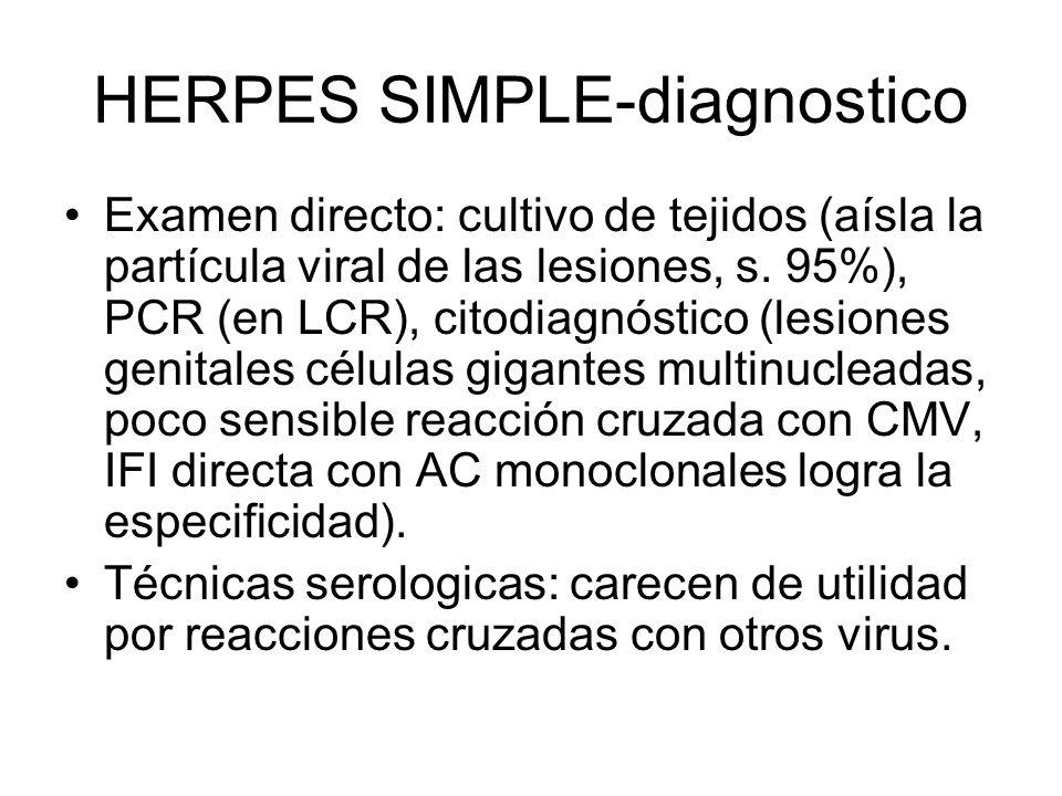 HERPES SIMPLE-diagnostico