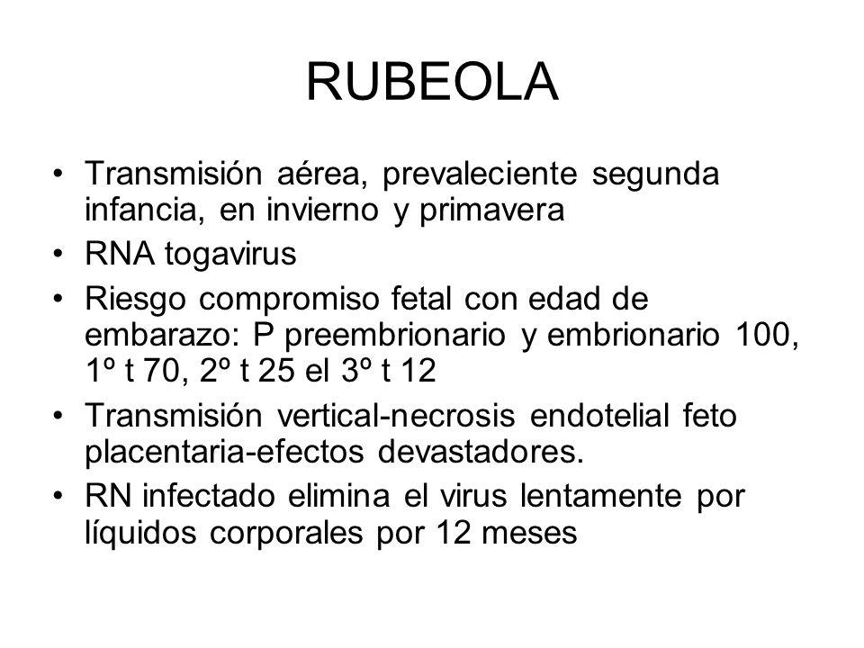RUBEOLA Transmisión aérea, prevaleciente segunda infancia, en invierno y primavera. RNA togavirus.