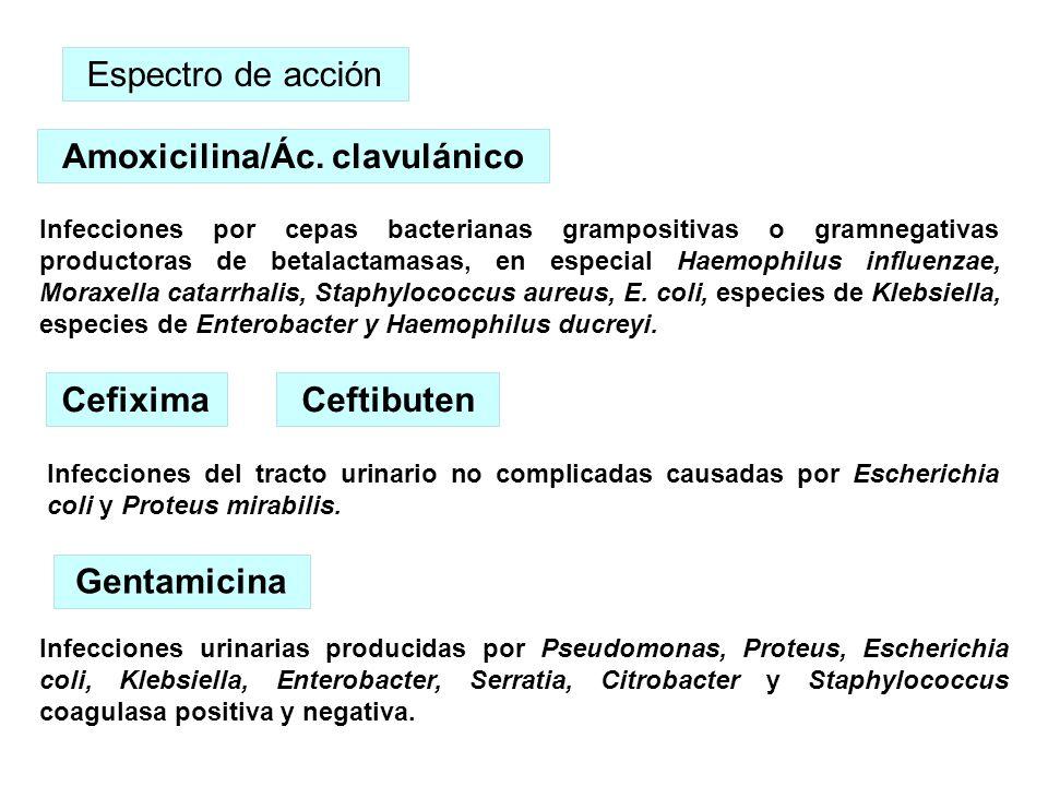 Amoxicilina/Ác. clavulánico