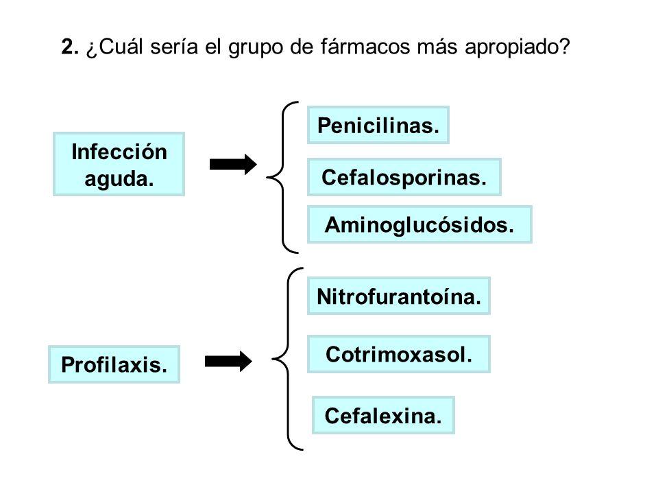 2. ¿Cuál sería el grupo de fármacos más apropiado