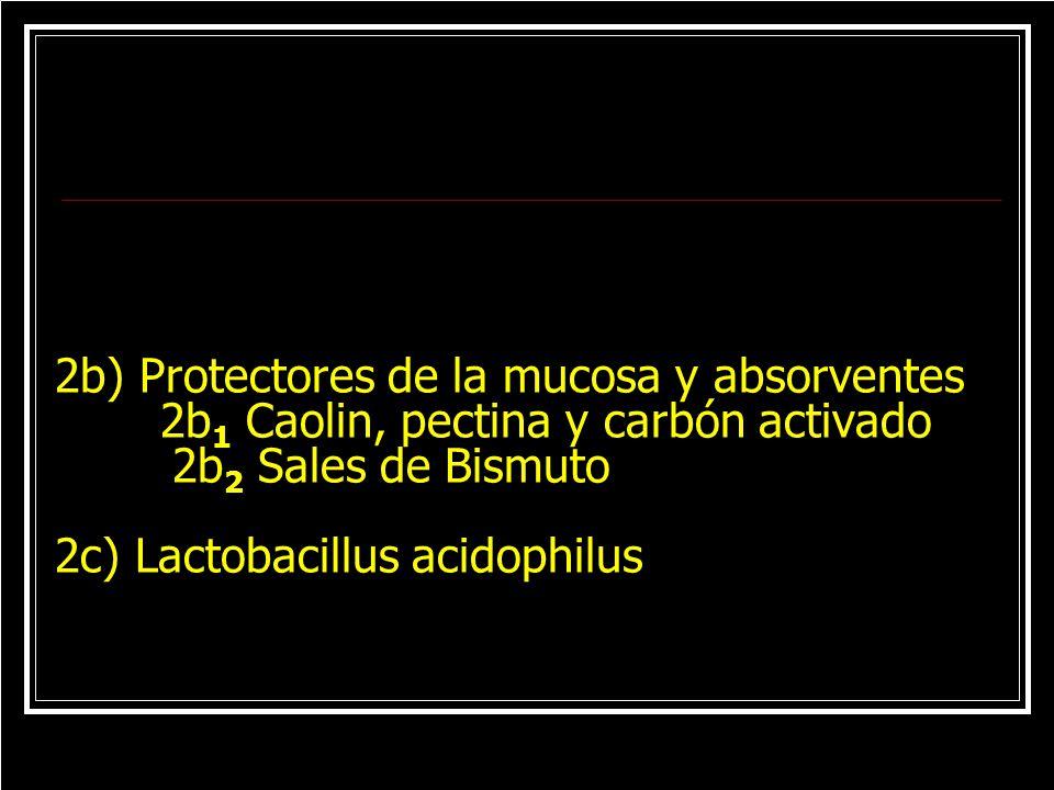 2b) Protectores de la mucosa y absorventes