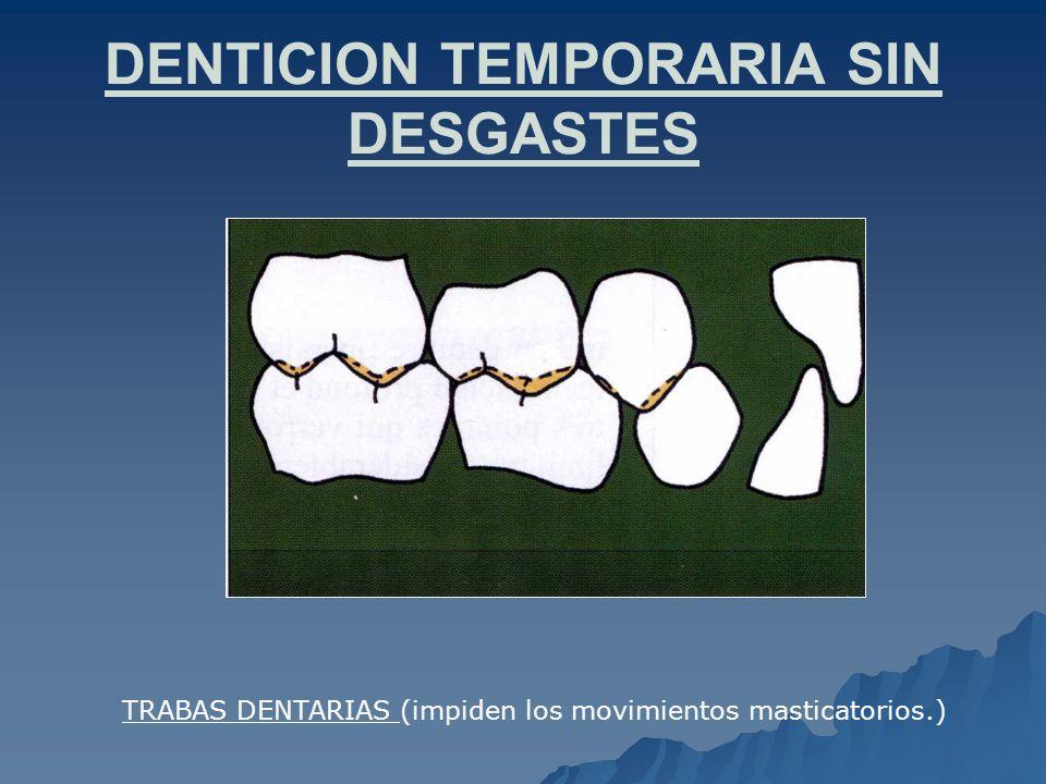 DENTICION TEMPORARIA SIN DESGASTES