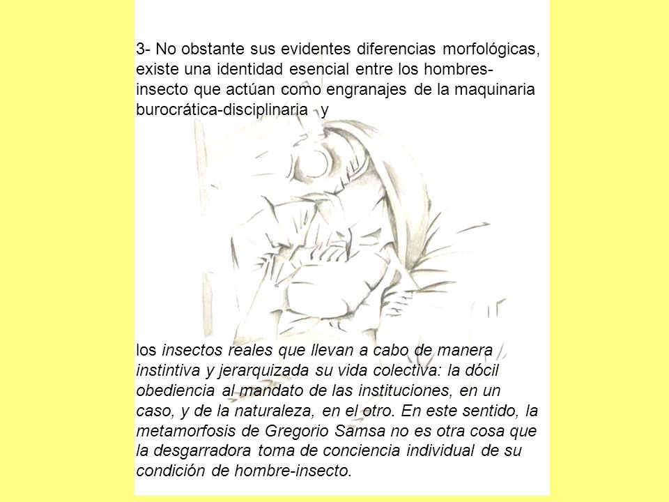 3- No obstante sus evidentes diferencias morfológicas, existe una identidad esencial entre los hombres-insecto que actúan como engranajes de la maquinaria burocrática-disciplinaria y