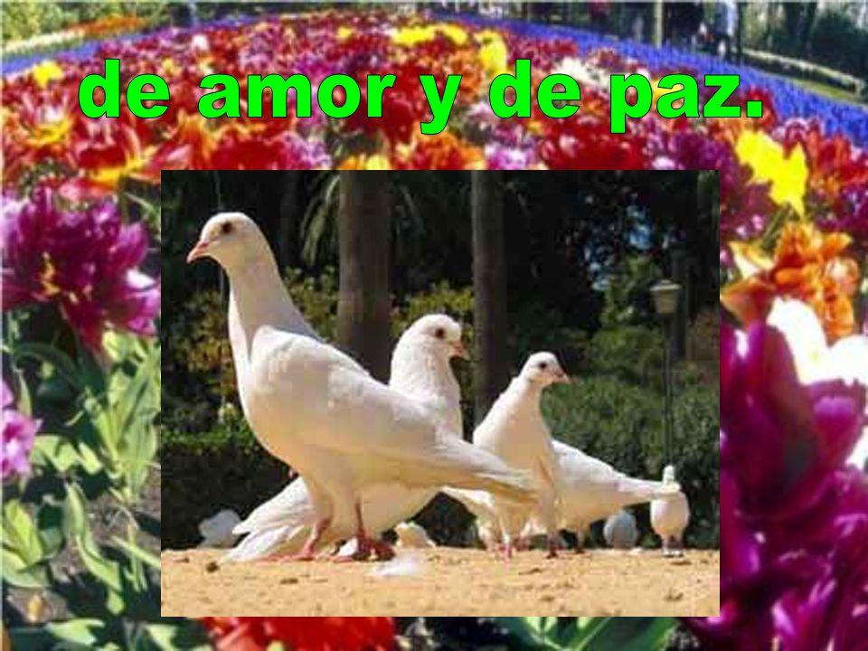 de amor y de paz.