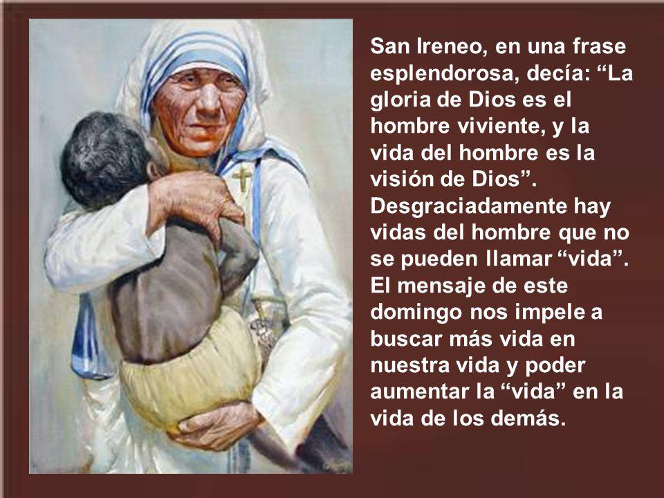 San Ireneo, en una frase esplendorosa, decía: La gloria de Dios es el hombre viviente, y la vida del hombre es la visión de Dios .