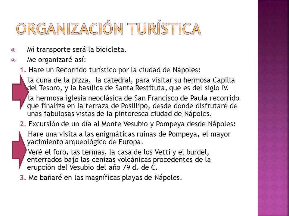 Organización turística