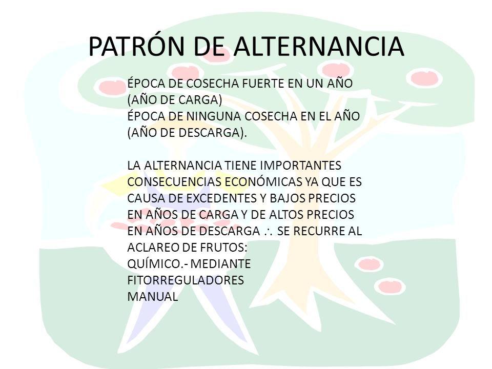 PATRÓN DE ALTERNANCIA ÉPOCA DE COSECHA FUERTE EN UN AÑO (AÑO DE CARGA)