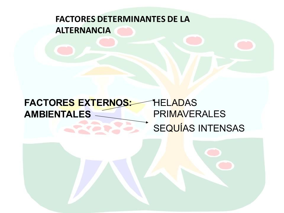 FACTORES DETERMINANTES DE LA