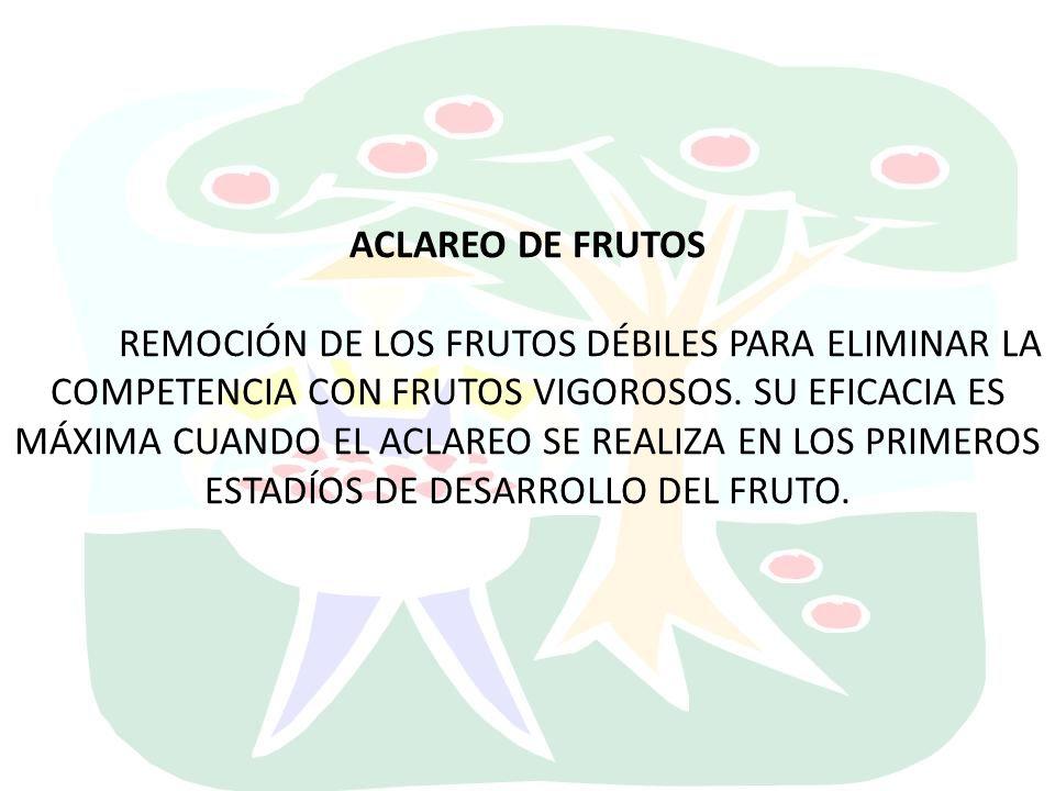 ACLAREO DE FRUTOS