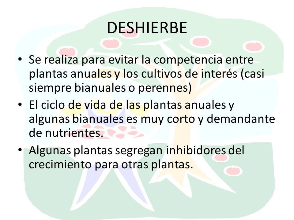 DESHIERBE Se realiza para evitar la competencia entre plantas anuales y los cultivos de interés (casi siempre bianuales o perennes)