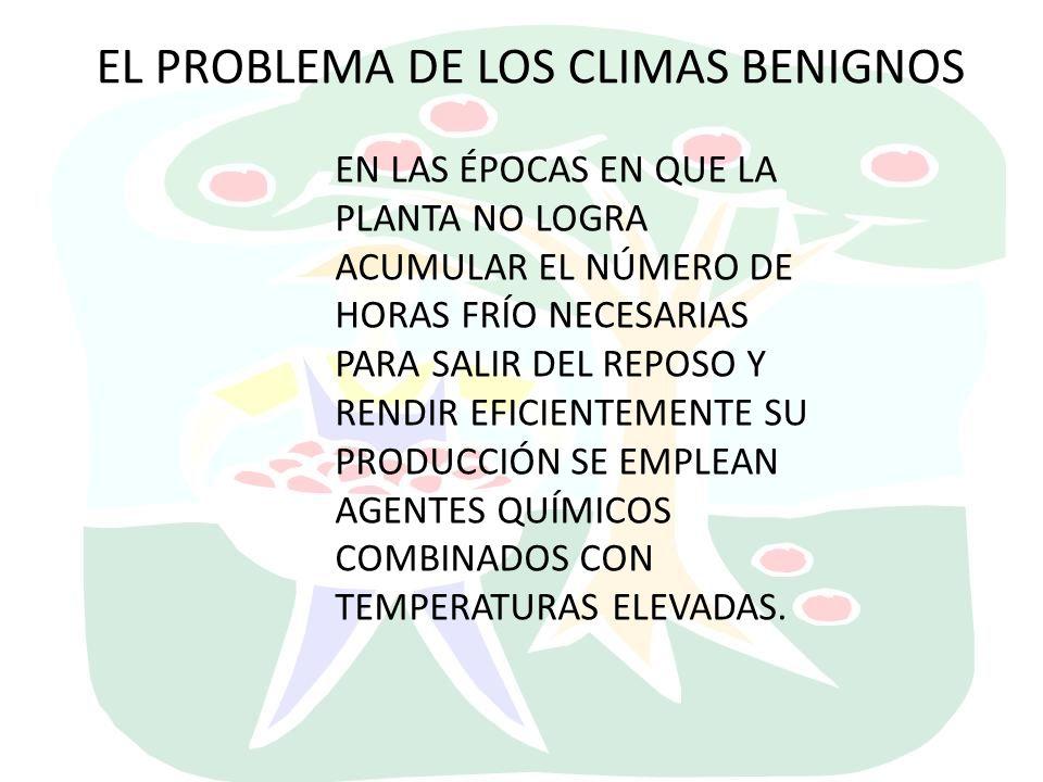 EL PROBLEMA DE LOS CLIMAS BENIGNOS