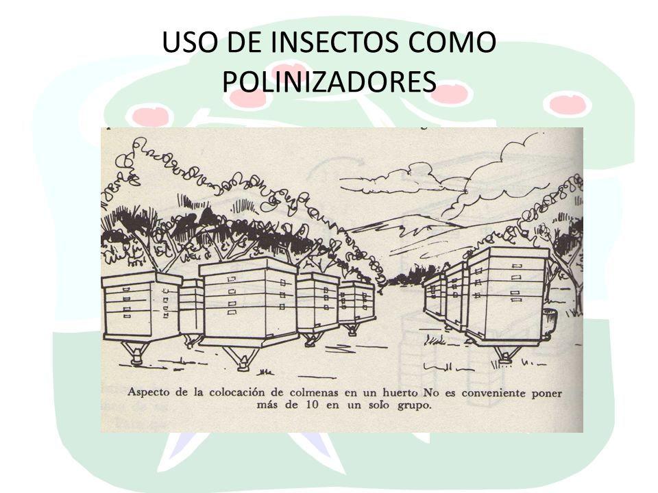 USO DE INSECTOS COMO POLINIZADORES