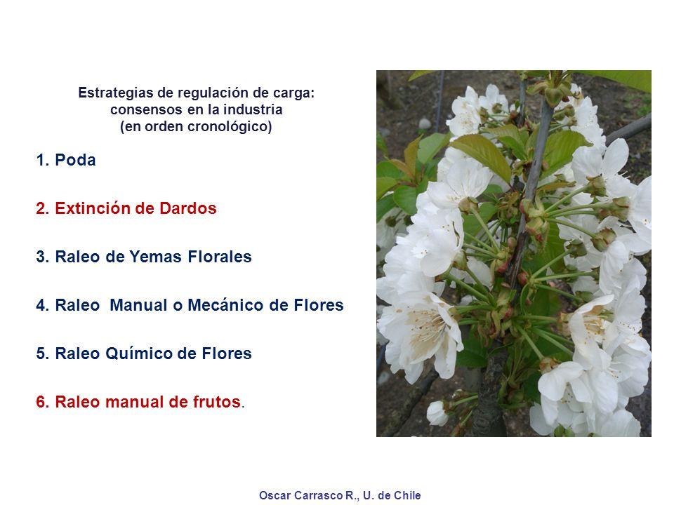 3. Raleo de Yemas Florales 4. Raleo Manual o Mecánico de Flores