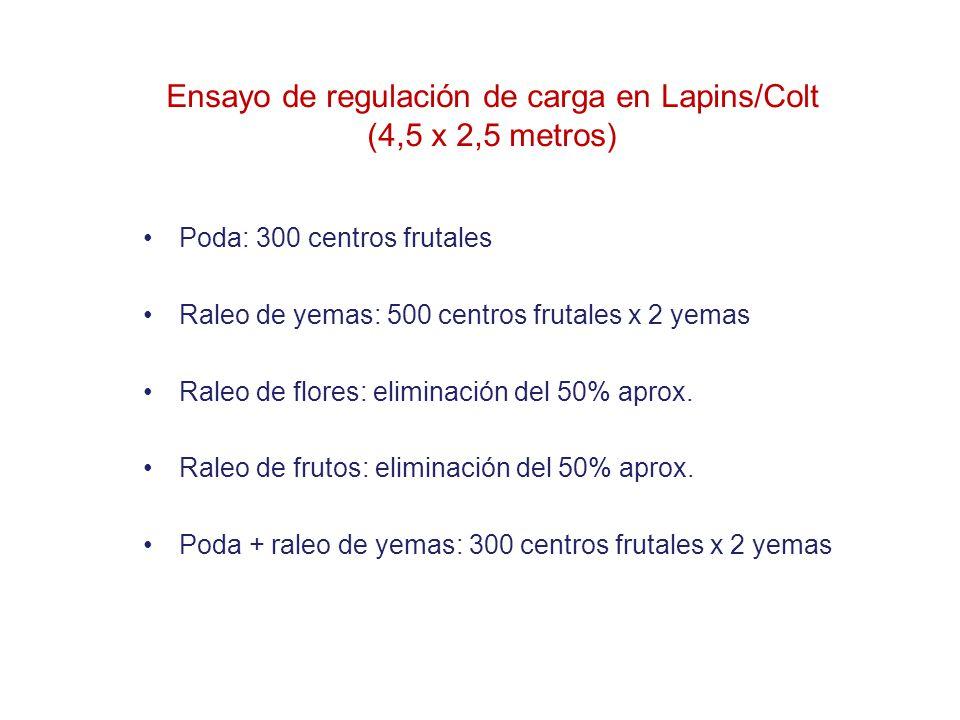 Ensayo de regulación de carga en Lapins/Colt (4,5 x 2,5 metros)
