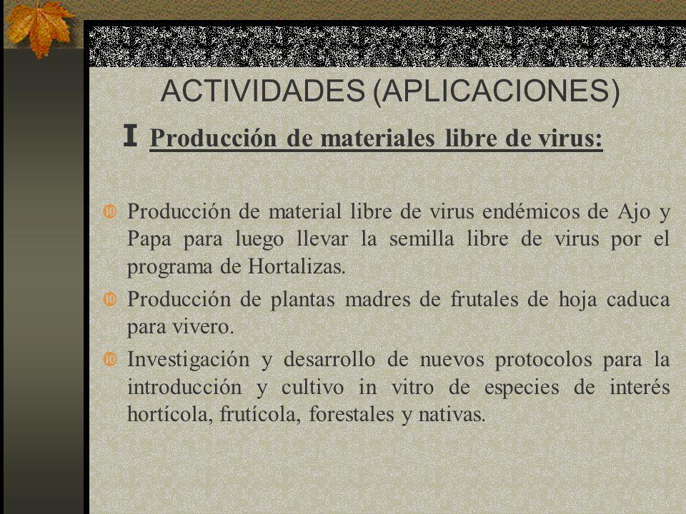 ACTIVIDADES (APLICACIONES) I Producción de materiales libre de virus: