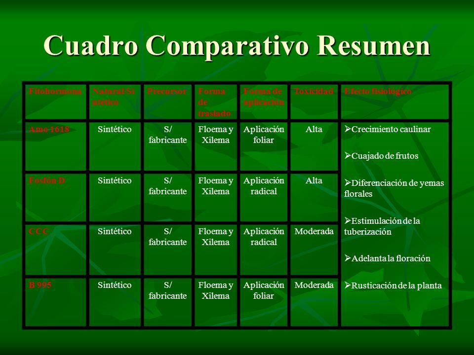 Cuadro Comparativo Resumen