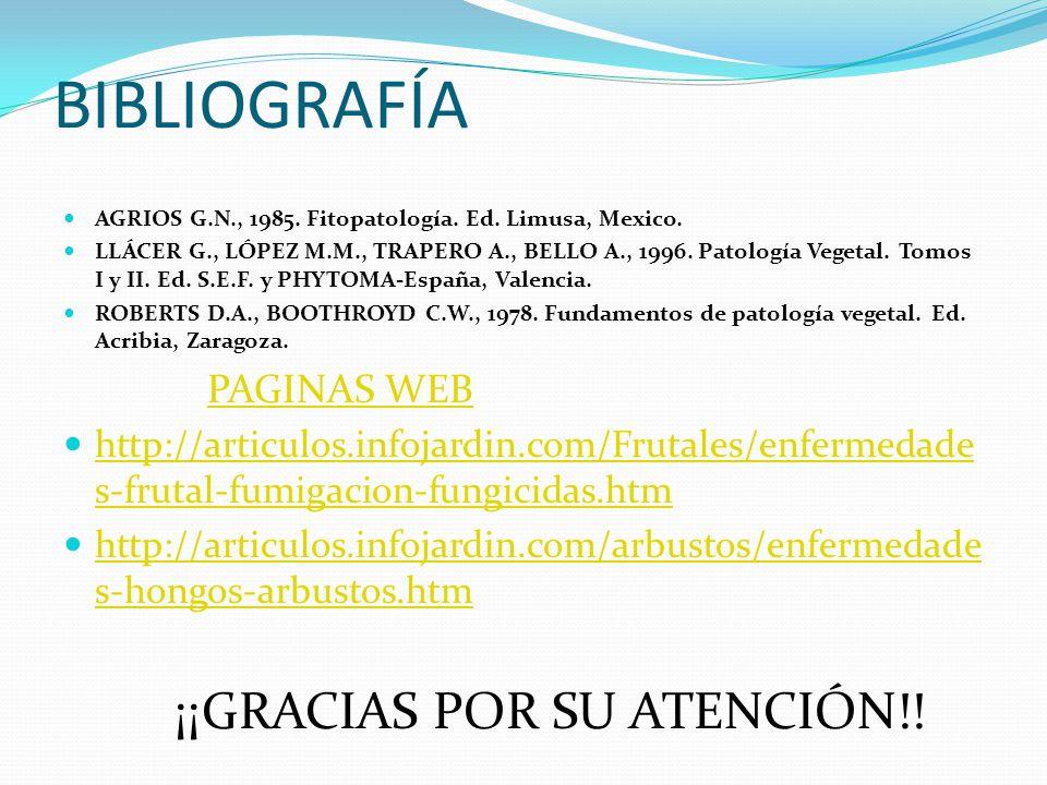 BIBLIOGRAFÍA ¡¡GRACIAS POR SU ATENCIÓN!! PAGINAS WEB