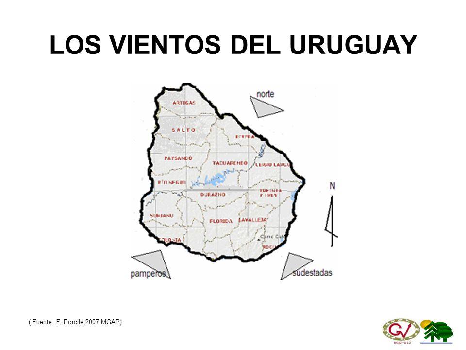 LOS VIENTOS DEL URUGUAY