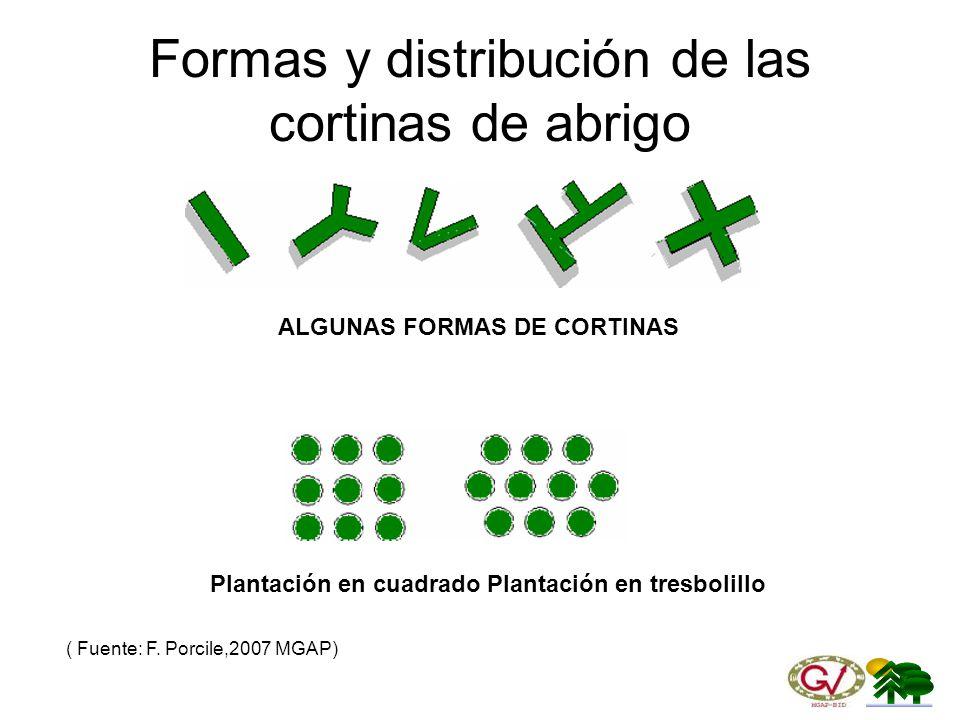 Formas y distribución de las cortinas de abrigo