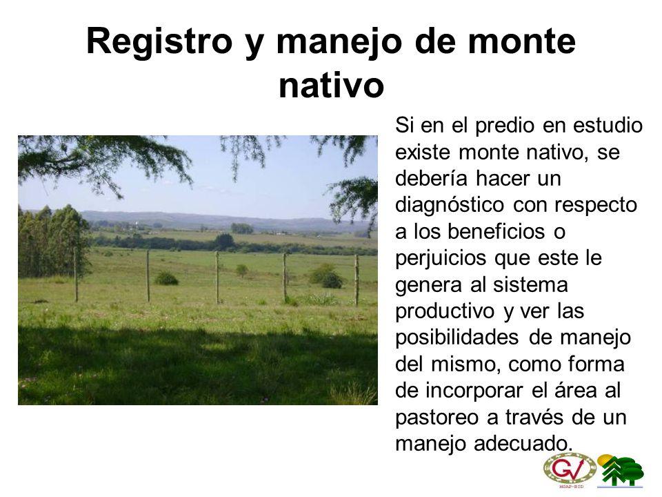 Registro y manejo de monte nativo