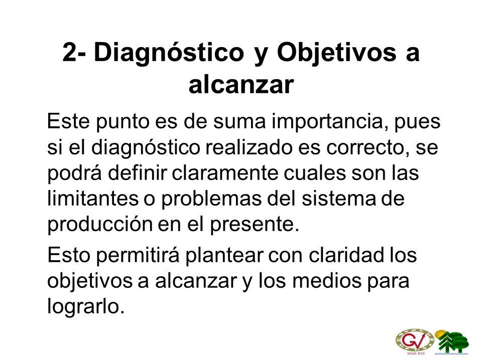 2- Diagnóstico y Objetivos a alcanzar