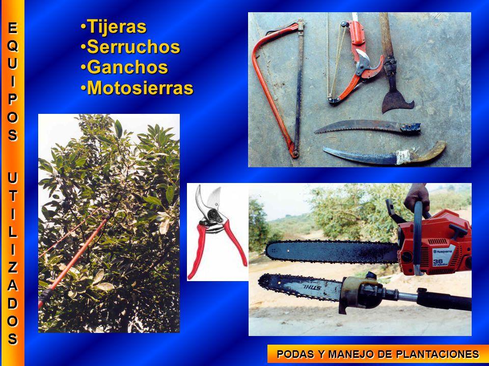 PODAS Y MANEJO DE PLANTACIONES