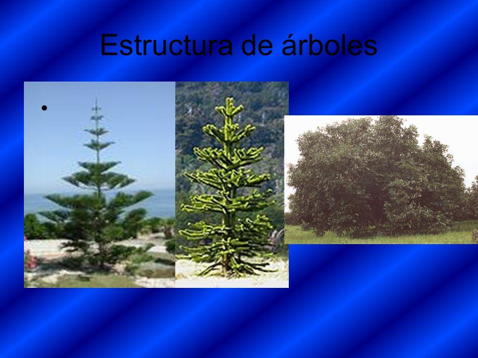 Estructura de árboles