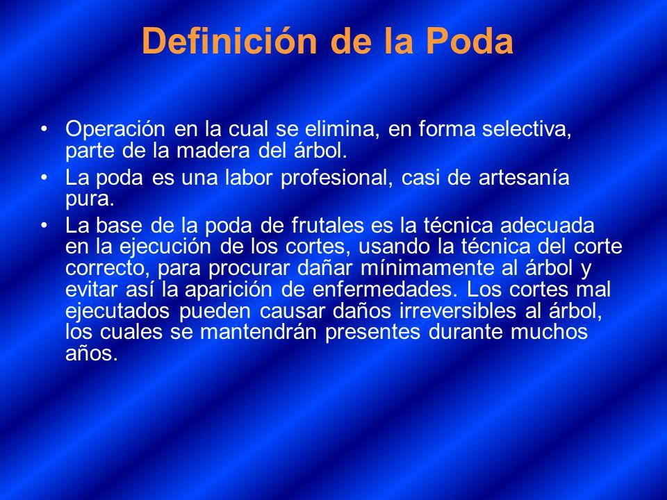 Definición de la Poda Operación en la cual se elimina, en forma selectiva, parte de la madera del árbol.