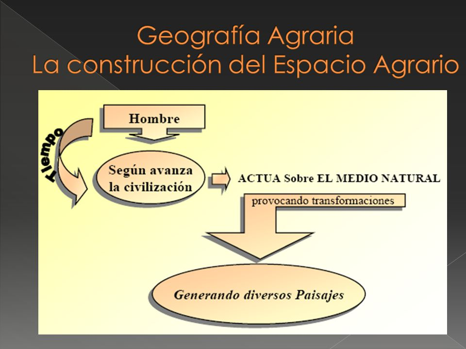 Geografía Agraria La construcción del Espacio Agrario