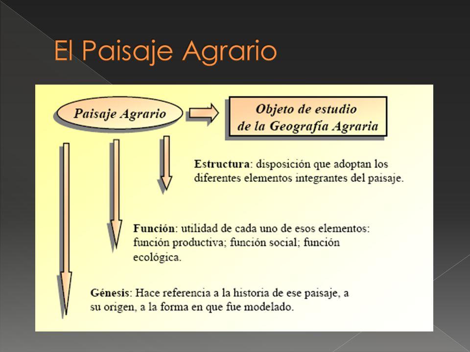 El Paisaje Agrario