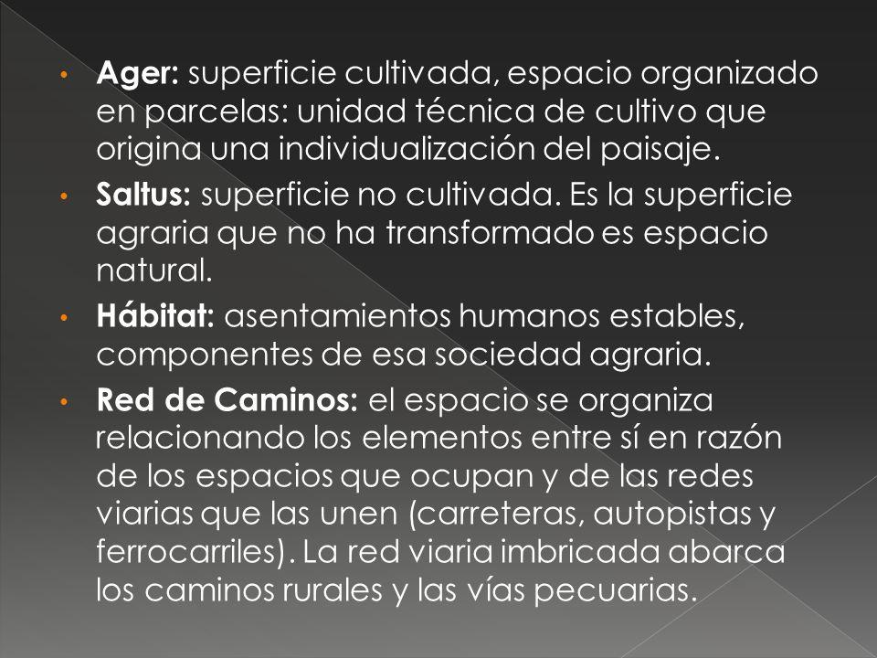 Ager: superficie cultivada, espacio organizado en parcelas: unidad técnica de cultivo que origina una individualización del paisaje.