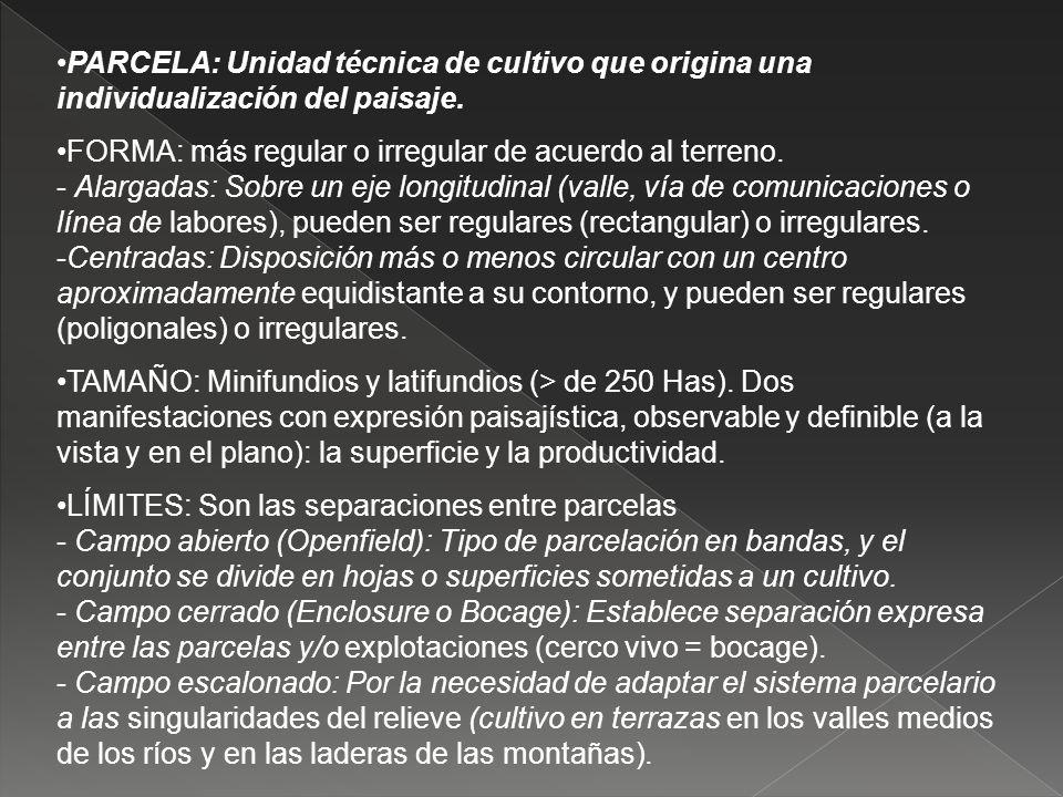 PARCELA: Unidad técnica de cultivo que origina una individualización del paisaje.