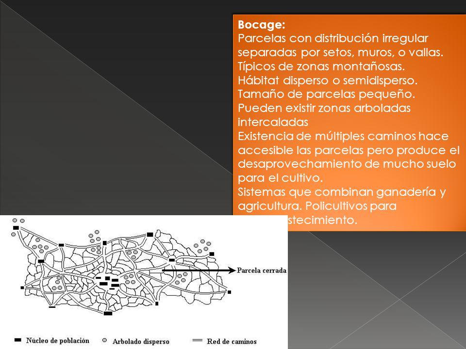 Bocage: Parcelas con distribución irregular separadas por setos, muros, o vallas. Típicos de zonas montañosas.