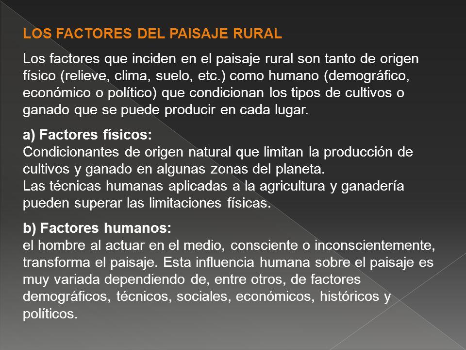 LOS FACTORES DEL PAISAJE RURAL