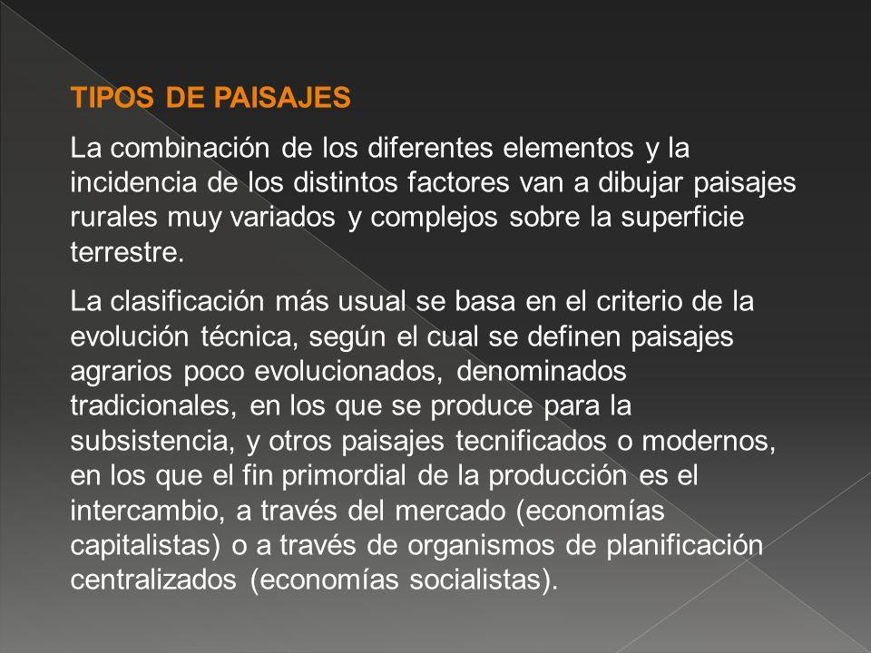 TIPOS DE PAISAJES