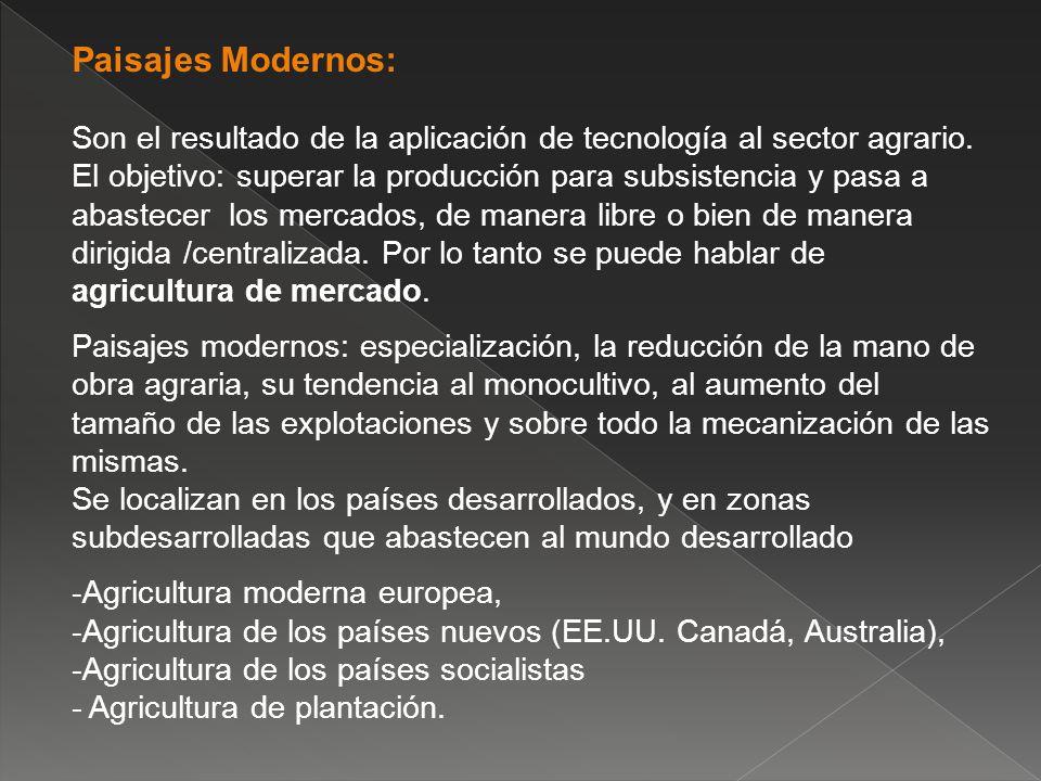 Paisajes Modernos: