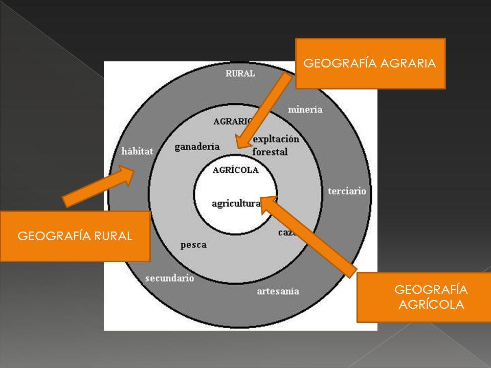 GEOGRAFÍA AGRARIA GEOGRAFÍA RURAL GEOGRAFÍA AGRÍCOLA