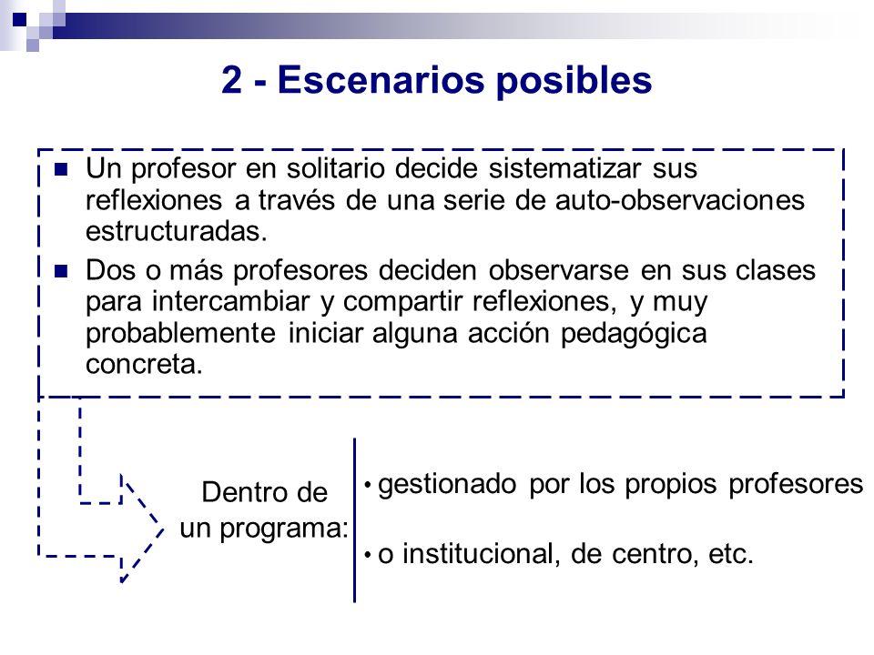 2 - Escenarios posibles Un profesor en solitario decide sistematizar sus reflexiones a través de una serie de auto-observaciones estructuradas.