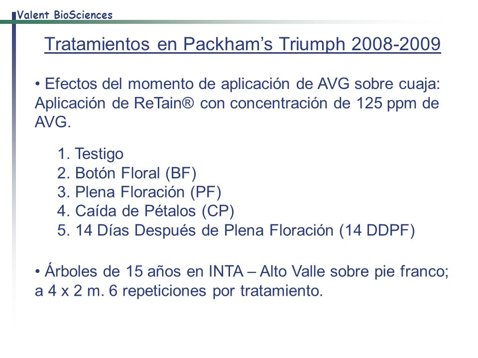 Tratamientos en Packham's Triumph 2008-2009