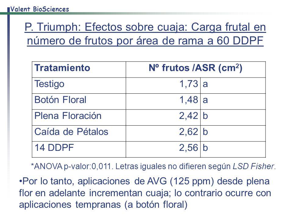 P. Triumph: Efectos sobre cuaja: Carga frutal en número de frutos por área de rama a 60 DDPF