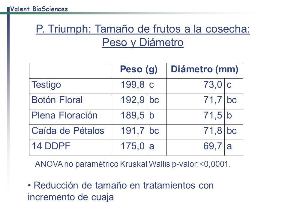 P. Triumph: Tamaño de frutos a la cosecha: Peso y Diámetro