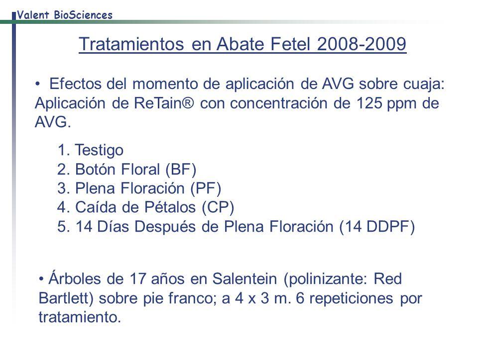 Tratamientos en Abate Fetel 2008-2009
