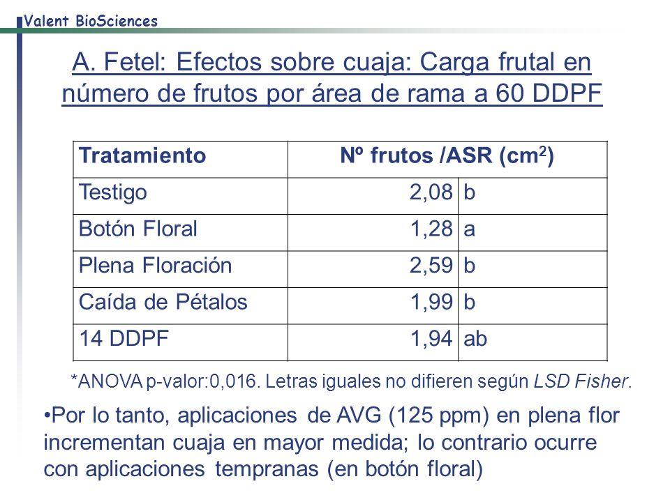 A. Fetel: Efectos sobre cuaja: Carga frutal en número de frutos por área de rama a 60 DDPF