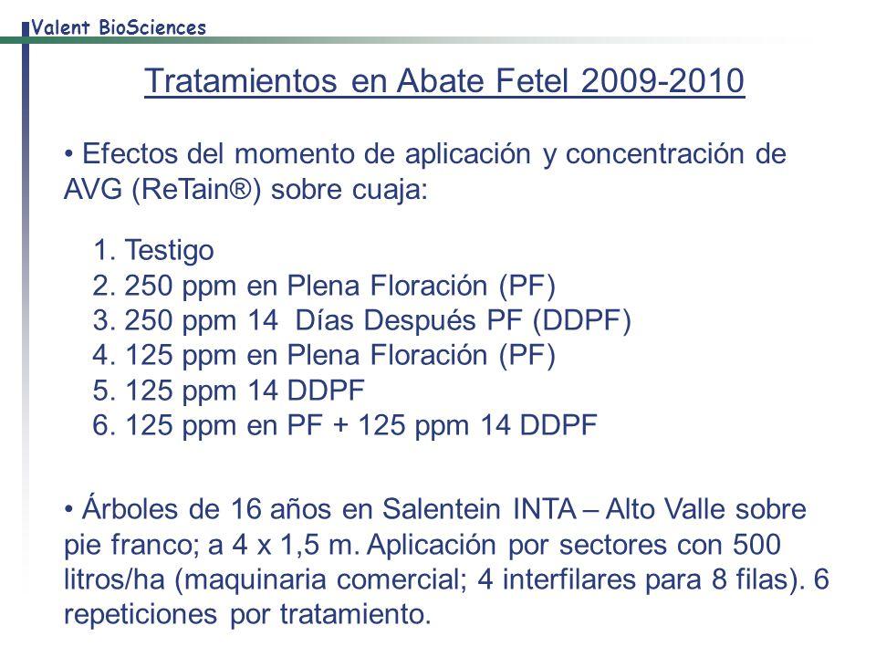 Tratamientos en Abate Fetel 2009-2010
