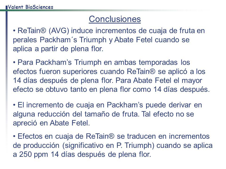 Conclusiones ReTain® (AVG) induce incrementos de cuaja de fruta en perales Packham´s Triumph y Abate Fetel cuando se aplica a partir de plena flor.