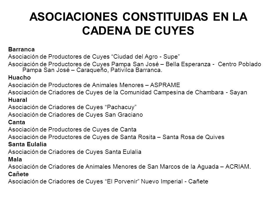 ASOCIACIONES CONSTITUIDAS EN LA CADENA DE CUYES