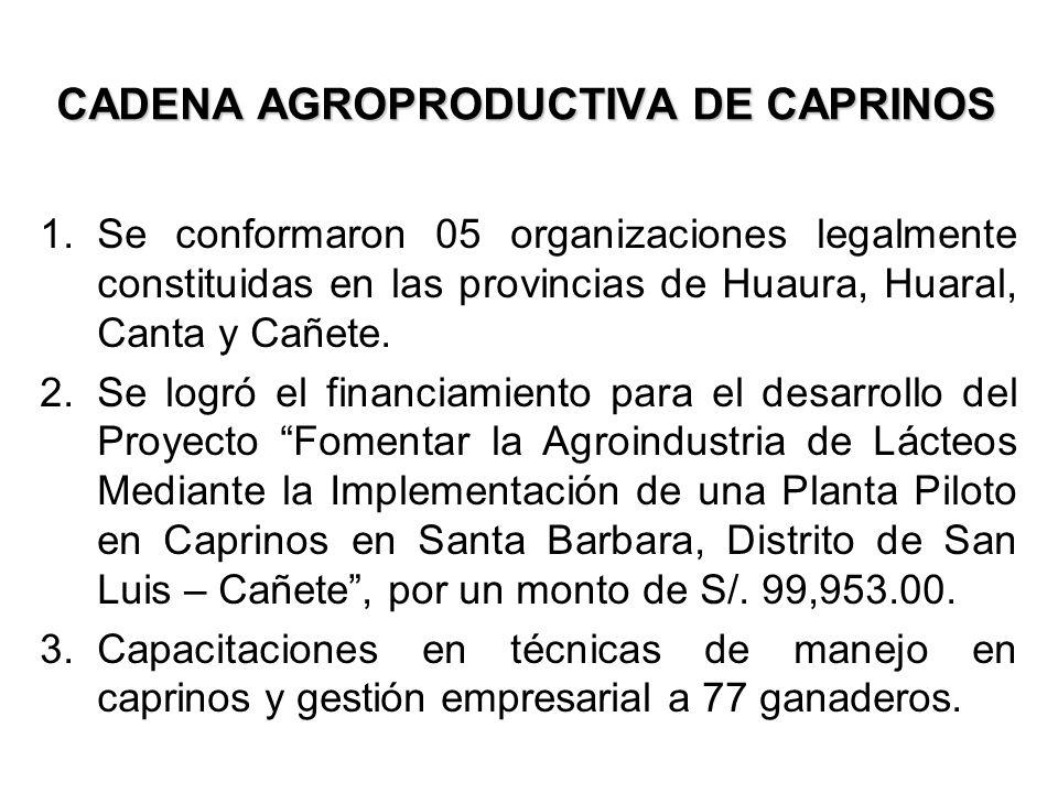 CADENA AGROPRODUCTIVA DE CAPRINOS